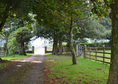 Paxton View Barn driveway